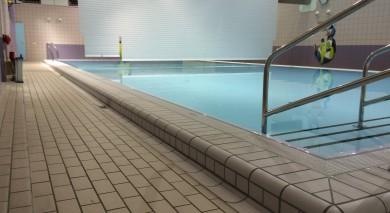 zwembad de scheg